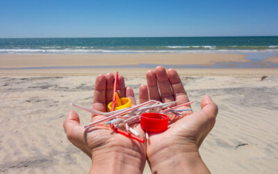 How to Keep Your Local Beaches Clean This Summer